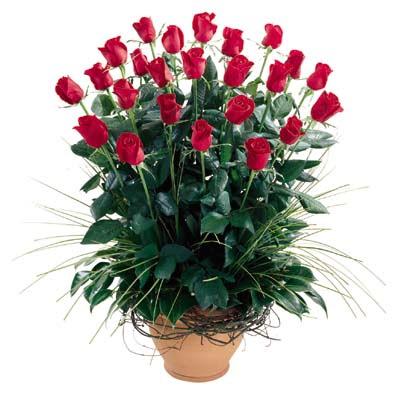 Bursadaki çiçekçi nilüfer hediye çiçek yolla  10 adet kirmizi gül cam yada mika vazo