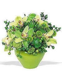 cam yada mika vazoda 5 adet orkide   Bursa çiçek siparişi inegöl çiçek servisi , çiçekçi adresleri