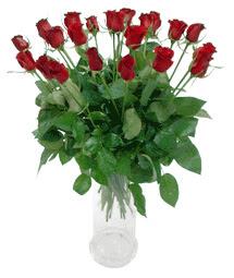 Çiçekçi Bursa sitesi inegöl çiçek mağazası , çiçekçi adresleri  11 adet kimizi gülün ihtisami cam yada mika vazo modeli