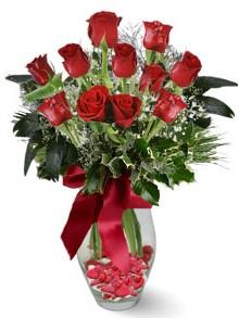 9 adet gül  Bursa çiçek siparişi  kirmizi gül