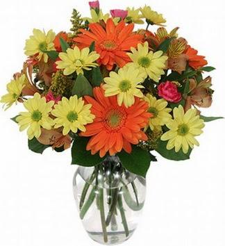 Bursadaki çiçek cicek , cicekci  vazo içerisinde karışık mevsim çiçekleri