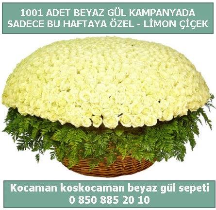 1001 adet beyaz gül sepeti özel kampanyada  Çiçekçi Bursa sitesi nilüfer anneler günü çiçek yolla