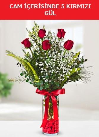 Cam içerisinde 5 adet kırmızı gül  Online Bursa çiçekçi