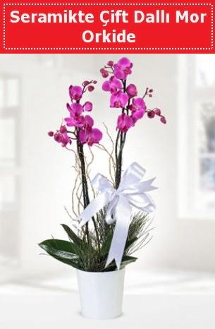 Seramikte Çift Dallı Mor Orkide  Çiçekçi Bursa sitesi nilüfer çiçek siparişi vermek