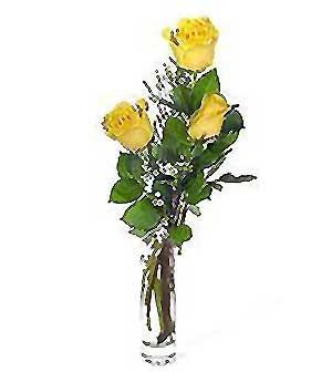 Bursadaki çiçekçi bursaya çiçek  3 adet kalite cam yada mika vazo gül