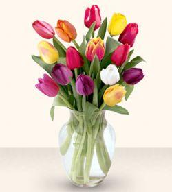 Çiçekçi bursa çiçek firması  13 adet cam yada mika vazoda laleler