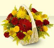 Çiçekçi Bursa sitesi gemlik güvenli kaliteli hızlı çiçek  sepette mevsim çiçekleri