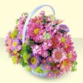 Bursa çiçekçi karacabey 14 şubat sevgililer günü çiçek  bir sepet dolusu kir çiçegi  Çiçekçi Bursa sitesi nilüfer anneler günü çiçek yolla