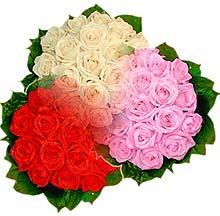 3 renkte gül seven sever   Bursa çiçek büyük orhan yurtiçi ve yurtdışı çiçek siparişi