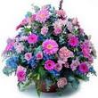 karisik mevsim kir çiçekleri  Çiçekçi Bursa sitesi nilüfer anneler günü çiçek yolla