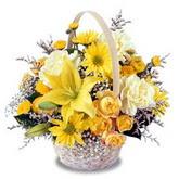 sadece sari çiçek sepeti   Çiçekçi Bursa sitesi nilüfer anneler günü çiçek yolla