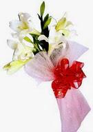 Bursa çiçek büyük orhan yurtiçi ve yurtdışı çiçek siparişi  ince vazoda gerbera ve ayi