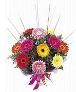 karisik gerbera çiçekleri  Bursa çiçek satışı iznik hediye sevgilime hediye çiçek