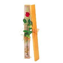 ince  kutuda  1  gül   Bursa çiçek satışı iznik hediye sevgilime hediye çiçek