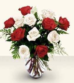 Bursadaki çiçekçi nilüfer hediye çiçek yolla  6 adet kirmizi 6 adet beyaz gül cam içerisinde
