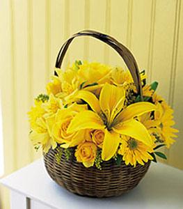 sepet içerisinde sarinin sihri  Bursa çiçek ucuz çiçek gönder