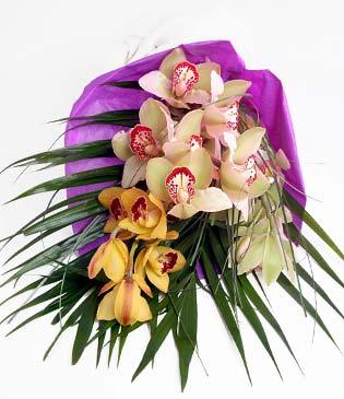 Bursa çiçek ucuz çiçek gönder  1 adet dal orkide buket halinde sunulmakta