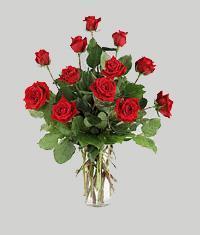 Bursa çiçek ucuz çiçek gönder  11 adet kirmizi gül vazo halinde