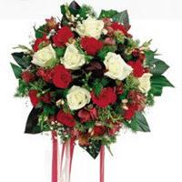 Bursa çiçek yolla osmangazi online çiçekçi , çiçek siparişi  6 adet kirmizi 6 adet beyaz ve kir çiçekleri buket
