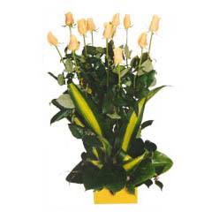 12 adet beyaz gül aranjmani  Bursa çiçek yenişehir çiçekçi mağazası