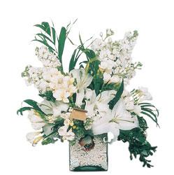 Bursadaki çiçekçi bursaya çiçek  sadece beyazlardan olusmus mevsim cam yada mika tanzim