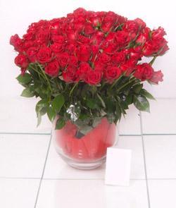 Bursadaki çiçekçiler bursaya çiçek yolla  101 adet kirmizi gül