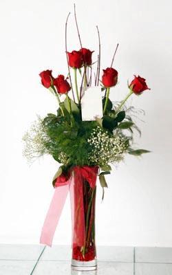 Bursa çiçek ucuz çiçek gönder  6 adet kirmizi gül ve cam yada mika vazo