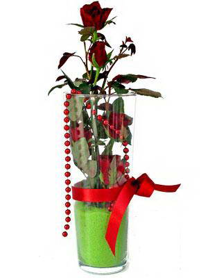Çiçekçi Bursa sitesi orhangazi çiçek satışı  Cam yada mika içerisinde 9 adet kirmizi gül - sevdiklerinize özel
