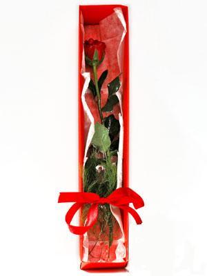 Bursa çiçekçi karacabey 14 şubat sevgililer günü çiçek  1 adet kutuda gül