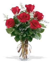 Çiçekçi Bursa sitesi nilüfer anneler günü çiçek yolla  7 adet kirmizi gül cam yada mika vazoda sevenlere