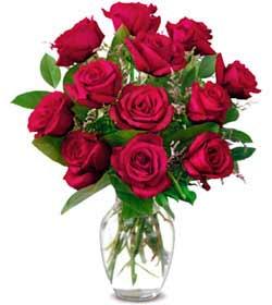 Çiçekçi Bursa sitesi orhangazi çiçek satışı  1 düzine kirmizi gül sevenlere özel vazo gülleri