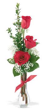 Bursa çiçek ucuz çiçek gönder  mika yada cam vazoda 3 adet kirmizi gül