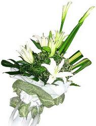 Bursa çiçek kestel uluslararası çiçek gönderme  3 dal kazablanka çiçegi ve yesillikler