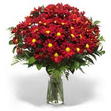 Bursa çiçek satışı iznik hediye sevgilime hediye çiçek  Kir çiçekleri cam yada mika vazo içinde