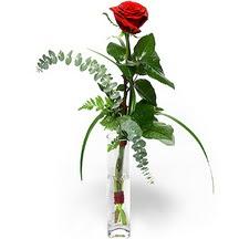 Çiçekçi Bursa sitesi gemlik güvenli kaliteli hızlı çiçek  Sana deger veriyorum bir adet gül cam yada mika vazoda