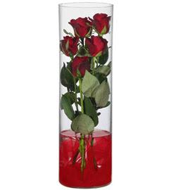 cam içerisinde 7 adet kirmizi gül  Çiçekçi bursa çiçek firması
