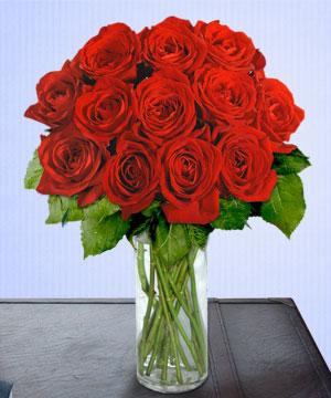 Anneme 12 adet cam içerisinde kirmizi gül  Online Bursa çiçekçi