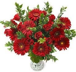 5 adet kirmizi gül 5 adet gerbera aranjmani  Bursa çiçek satışı Bursa çiçek yolla