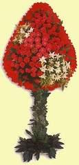 Bursa çiçek iznik çiçek online çiçek siparişi  dügün açilis çiçekleri  Bursa çiçekçiler orhaneli çiçekçiler