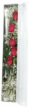 Online Bursa çiçekçi   5 adet gülden kutu güller