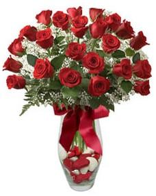 17 adet essiz kalitede kirmizi gül  Bursa çiçek mustafa kemal paşa çiçek siparişi sitesi
