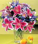 Bursa çiçek mustafa kemal paşa çiçek siparişi sitesi  Sevgi bahçesi Özel  bir tercih