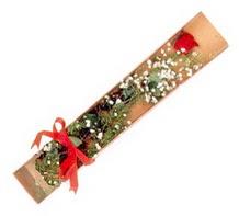 1 adet kirmizi gül  Çiçekçi Bursa sitesi inegöl çiçek mağazası , çiçekçi adresleri