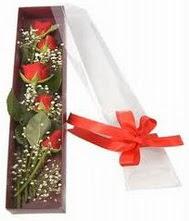 kutu içinde 5 adet kirmizi gül  Bursadaki çiçekçi bursaya çiçek