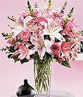 Bursa çiçek orhangazi internetten çiçek siparişi  Kazablanka biçme vazoda