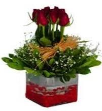 Bursa çiçek iznik çiçek online çiçek siparişi  7 adet mika yada cam vazoda gül tanzimi