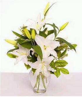 Bursa çiçek iznik çiçek online çiçek siparişi  2 dal cazablanca vazo çiçeği