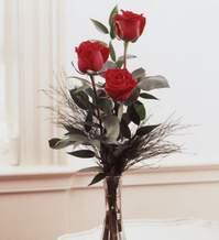 Bursa çiçek siparişi  Vazoda 3 adet güzel gül