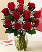 Sevgilime hediye 9 adet 1.ci kalite gül  Çiçekçi Bursa sitesi nilüfer çiçek siparişi vermek