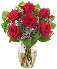 Kız arkadaşıma hediye 6 kırmızı gül  Bursadaki çiçekçi bursaya çiçek